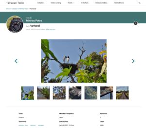 Captura de tela da página do item no Tainacan Interface 2.0