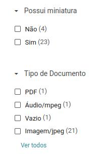 Captura de tela mostrando os filtros de miniatura e tipo de documento